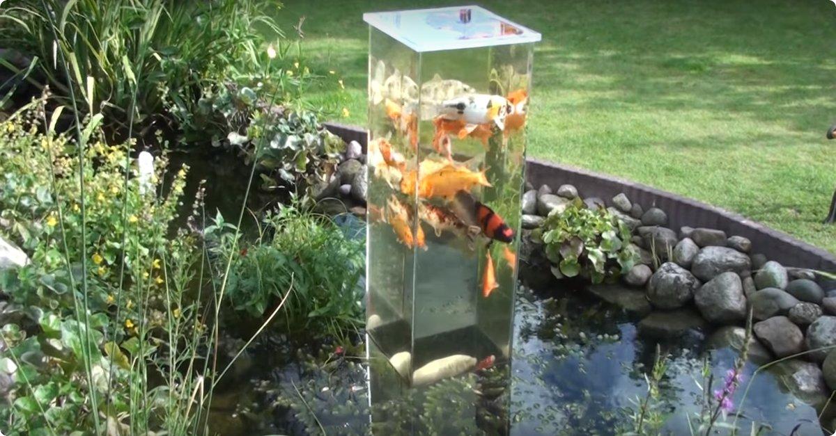 Hij plaatst een zelfgemaakte vissentoren in zijn vijver for Vissen vijver