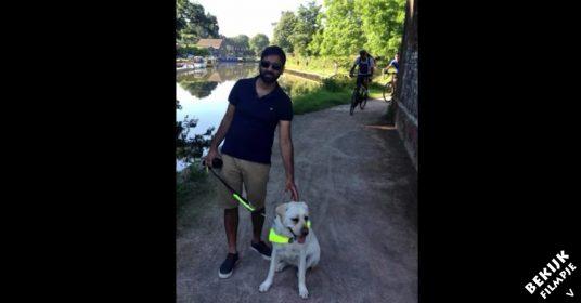 blindegeleide-hond-camera